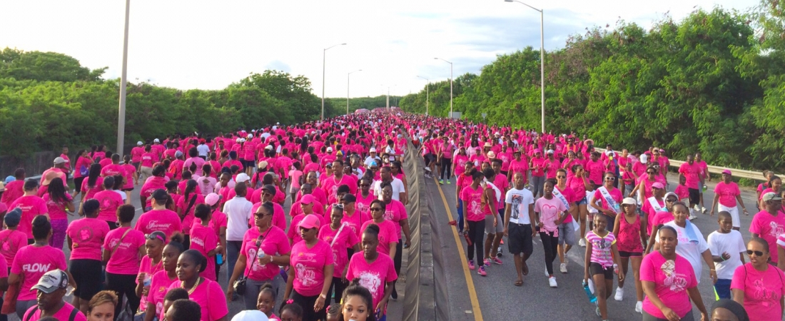 A Sea of Pink